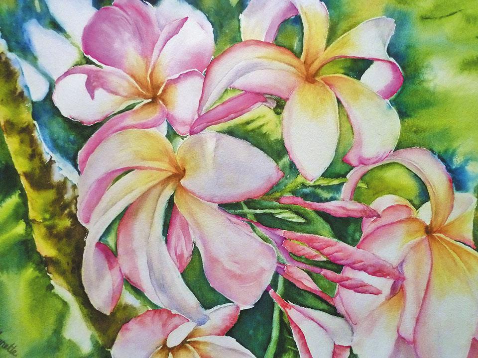 Annette Straugheir - Aotearoa Artist